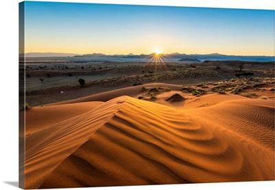 Ripples Of Sand At Sunrise, Petrified Red Dunes, Namib-Naukluft National Park, Africa