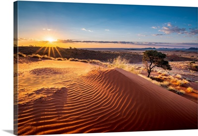 Ripples Of Sand On A Petrified Dune At Sunset, Namib-Naukluft National Park, Africa