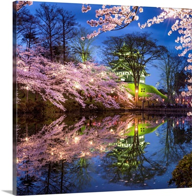 Sakura festival at the Takada castle, Joetsu, Niigata prefecture, Japan