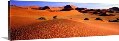 Sand Dunes, Sossusvlei, Nambia, Africa