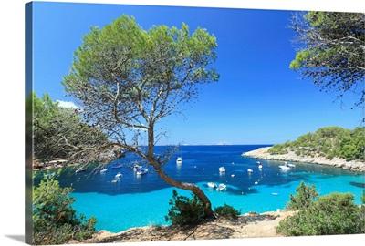 Spain, Balearic Islands, Ibiza, Cala Salada Beach