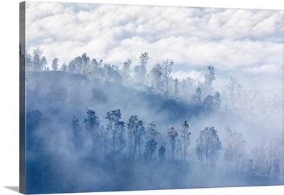 Sulfur Mist, Ijen Crater, Eastern Giava Island, Indonesia