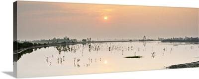 Sundarbans National Park, Tiger Reserve at dawn, West Bengal, India