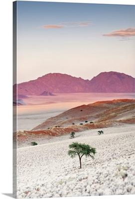 Sunrise, Namibia, Africa