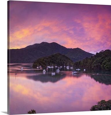 Sunset illuminates the picturesque Ngakuta Bay, Queen Charlotte Sound, New Zealand