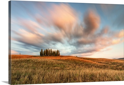 Sunset Near The Iconic Cypresses Of San Quirico d'Orcia, Tuscany, Italy