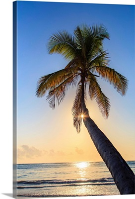 Tanzania. Zanzibar, Matemwe, Beach at dawn