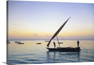 Tanzania. Zanzibar, Michamvi Village, Dhows (traditional sailboats) sailing at sunset