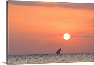 Tanzania. Zanzibar, Stone Town, Old Town, Dhow (traditional sailboat) sailing at sunset