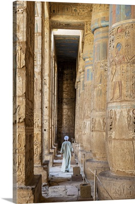 Temple Guardian At The Temple Of Ramses III On The Nile At Luxor, Egypt,
