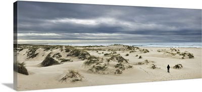 The vast empty beach and sand dunes of Sao Jacinto in Winter, Beira Litoral, Portugal