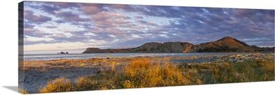Tologa Bay, East Cape, North Island, New Zealand