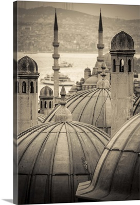 Turkey, Istanbul, Sultanahmet, domes of the Suleymaniye Mosque complex