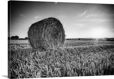 UK, England, Oxfordshire, Holt, straw bales