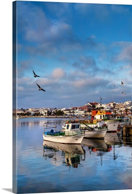 View from fishing harbour towards old town, Lagos, Algarve, Portugal