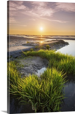 Wadden Sea with low tide, Duhnen, Cuxhaven, Lower Saxony, Germany