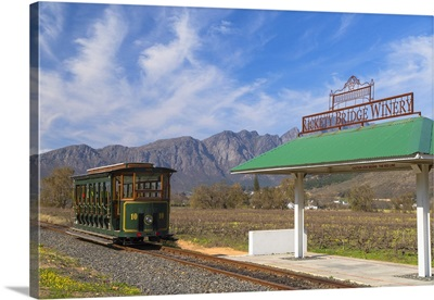 Wine tram at Rickety Bridge Wine Estate, Franschhoek, Western Cape, South Africa