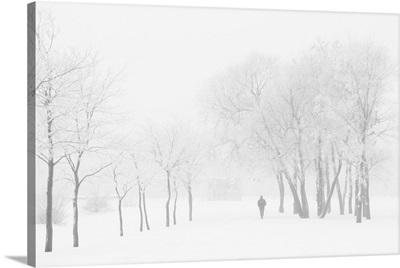 Winter, Saint Petersburg, Russia