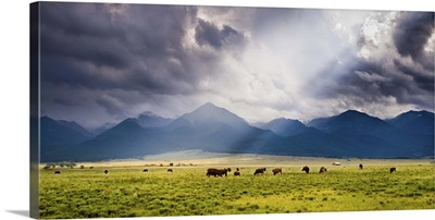 A Storm Illuminates the Valley and Ranches; Westcliffe, CO