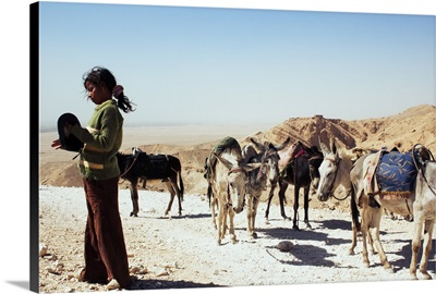 A Young Girl With Her Caravan of Donkeys