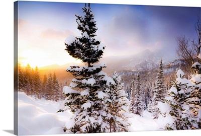 Sun Rises After A Fresh Snowfall, Rocky Mountain National Park, Colorado
