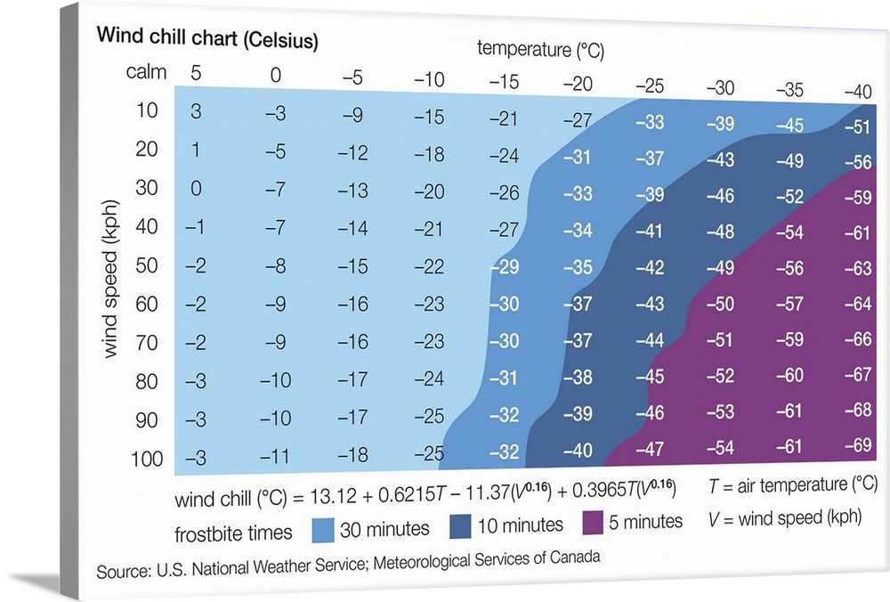 graphic about Printable Wind Chill Chart named Celsius Wind Chill Chart