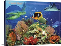 Tropical Fish Wall Art Canvas Prints