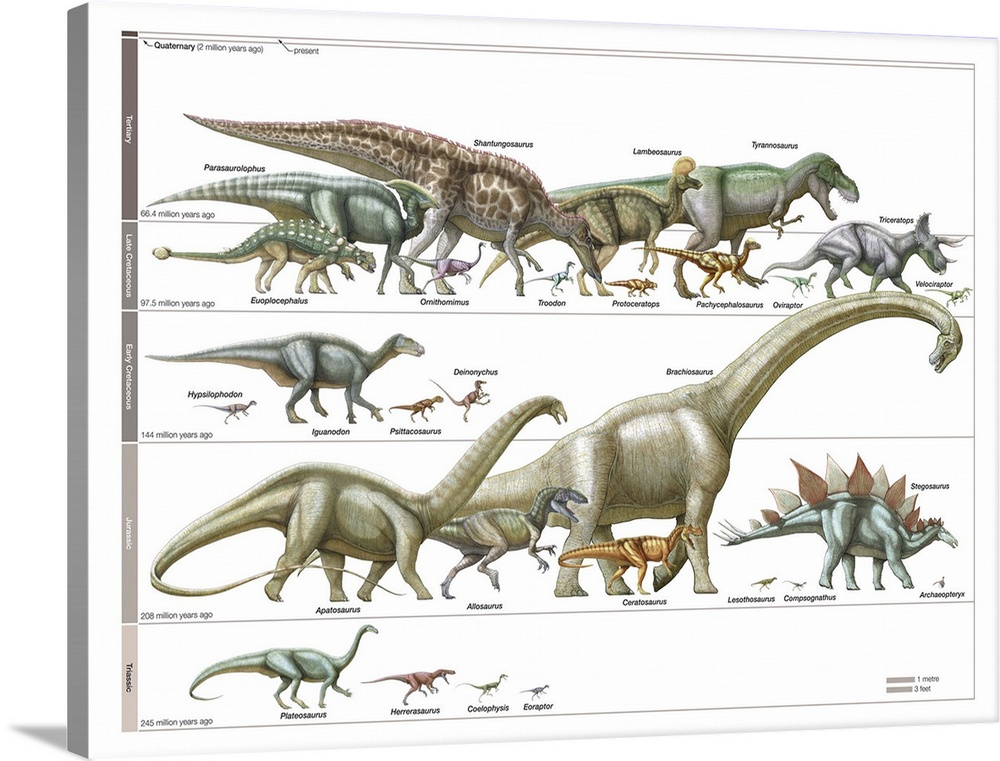 Timeline of Dinosaurs Wall Art, Canvas Prints, Framed Prints, Wall ...