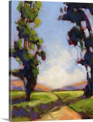 Eucalyptus Road 1