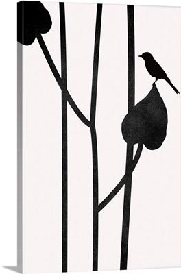 The Bird - Noir