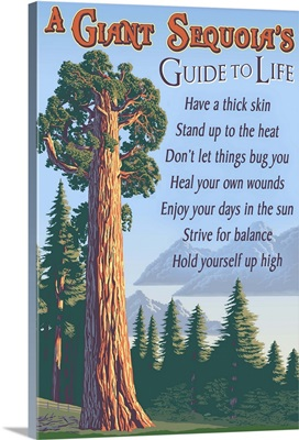 A Giant Sequoia's Guide to Life: Retro Travel Poster