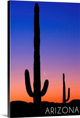 Arizona, Cactus and Moon