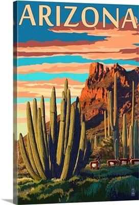 Arizona, Organ Pipe Cactus