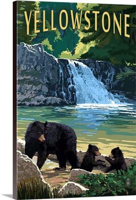 Bear Family, Yellowstone
