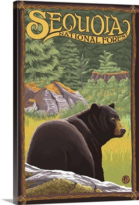 Bear in Forest - Sequoia National Forest, CA: Retro Travel Poster