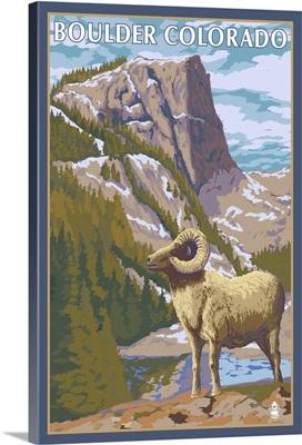 Big Horn Sheep - Boulder, Colorado: Retro Travel Poster