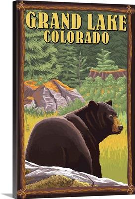 Black Bear in Forest - Grand Lake, Colorado: Retro Travel Poster