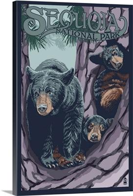 Black Bears in Tree - Sequoia National Park: Retro Travel Poster