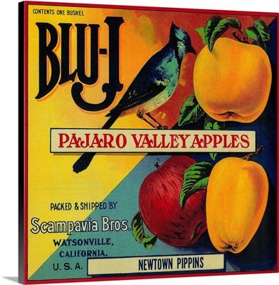 Blu-J Apple Crate Label, Watsonville, CA