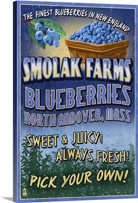 Blueberries, Smolak Farms, Massachusetts