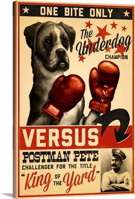 Boxer, Retro Boxing Ad