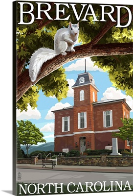 Brevard, North Carolina - Courthouse and White Squirrel: Retro Travel Poster
