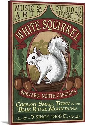 Brevard, North Carolina - White Squirrel Vintage Sign: Retro Travel Poster