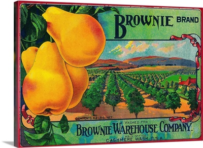 Brownie Pear Crate Label, Cashmere, WA