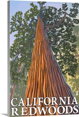 California Redwoods - Looking Up Tree: Retro Travel Poster