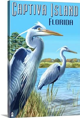 Captiva Island, Florida - Blue Herons in grass : Retro Travel Poster