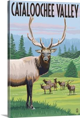 Cataloochee Valley, North Carolina - Elk Herd: Retro Travel Poster