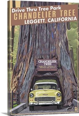Chandelier Tree - Drive Thru Tree Park, Leggett, California: Retro ...