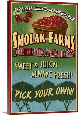 Cherries, Smolak Farms, Massachusetts