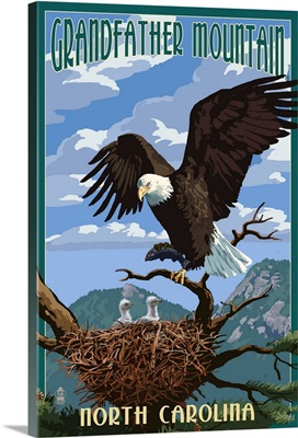 Eagle and Chicks, Grandfather Mountain, North Carolina